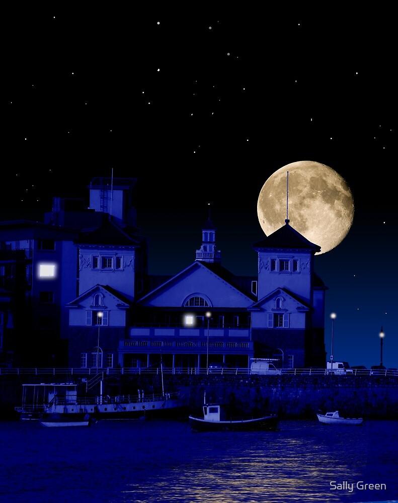 Knightstone Island in Moonlight by Sally Green