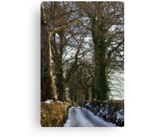 A Saturday afternoons stroll Canvas Print