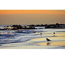 Shoreline Sunset Photographic Print