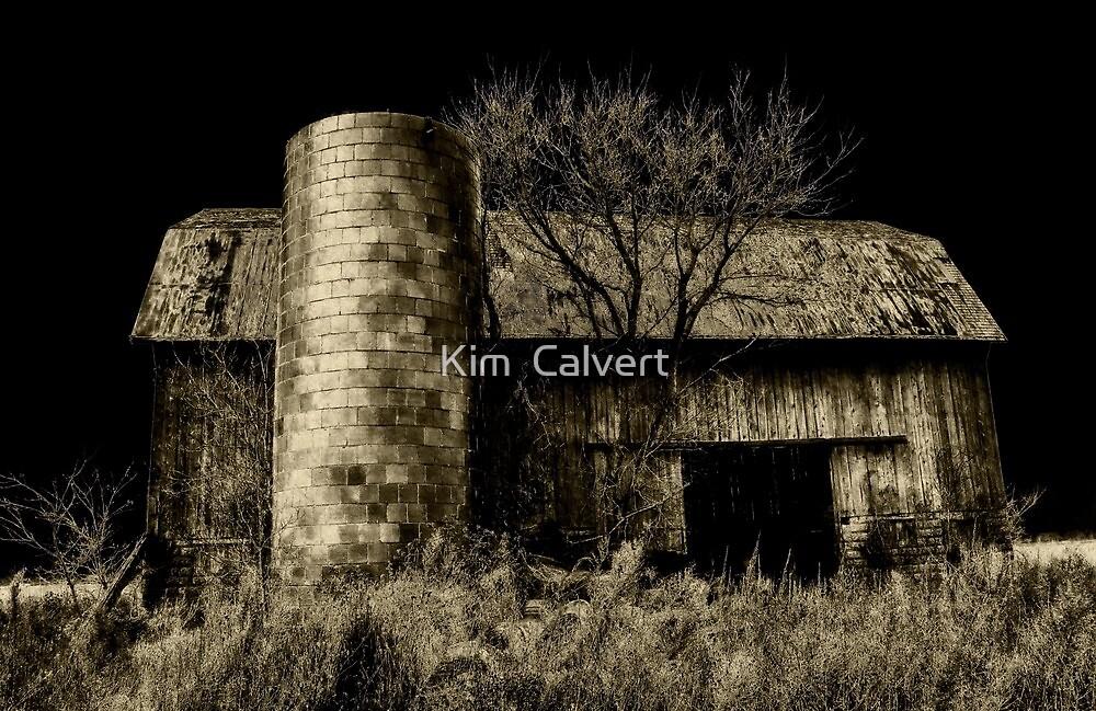 Old Barn by Kim  Calvert