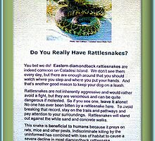 Rattle Snakes by George  Link
