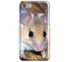 Curious Hamster iPhone Case/Skin