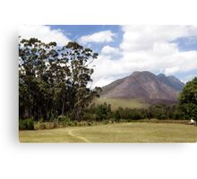 Overberg, South Africa Canvas Print