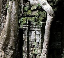 Ta Prohm Temple X - Angkor, Cambodia. by Tiffany Lenoir
