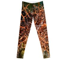 Orange Giant Basket Star Leggings