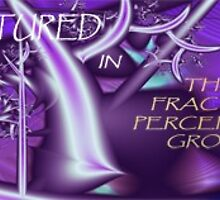 Banner Entry - Fractal Perception Group by viennablue