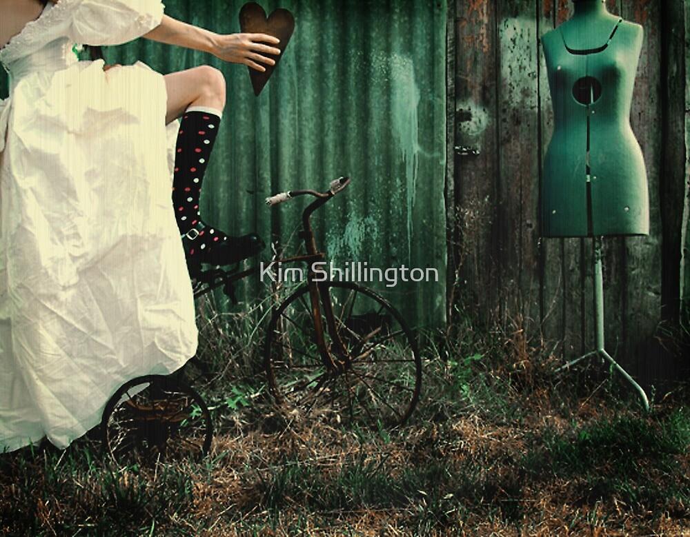 Marry Me by Kim Shillington