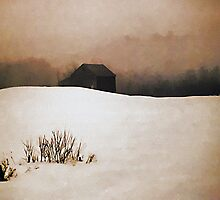 Barn with Snow and Fog by T.J. Martin