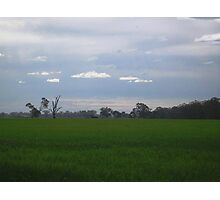 Crop- Euroa Photographic Print