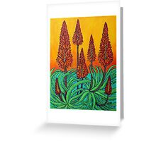 South African Fireball Greeting Card