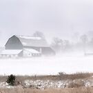 Another Snow Storm by ediaz