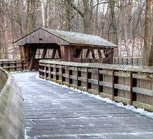 Wooden Footbridge in Wildwood Preserve Metropark, Toledo by Terence Russell