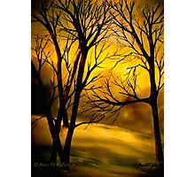 Yellow Moon Photographic Print