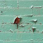 Mint Condition by ElyseFradkin