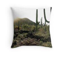 Sunrise in the Saguaro National Monument, Tucson, AZ Throw Pillow