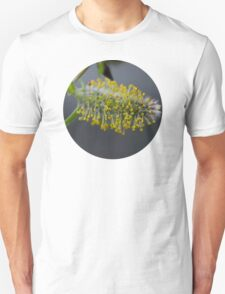 Pussy Willow In Bloom T-Shirt