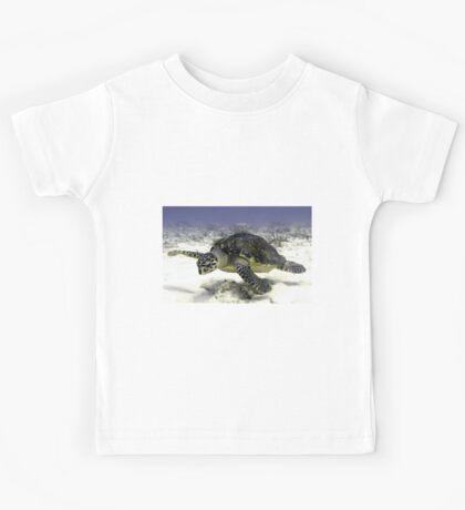 Caribbean Sea Turtle  Kids Tee