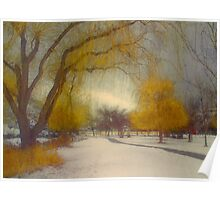 Skaha Path in Winter Poster