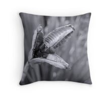 Day is Ending Throw Pillow