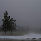 A Winter Fog by Larry Llewellyn