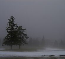 A Winter Fog by Larry Llewellyn