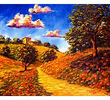 Road Home in the Poppy Hills Photographic Print