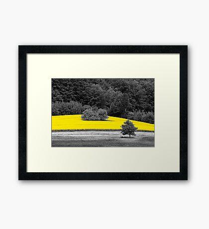 B&Y 10 Framed Print