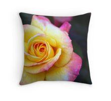 Gorgeous Rose Blooming Throw Pillow
