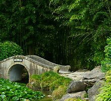 Traditional Chinese Stone Bridge by Jade Thorby