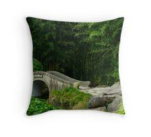 Traditional Chinese Stone Bridge Throw Pillow