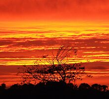 Fire in the Sky at Sunset - Ireland by CFoley