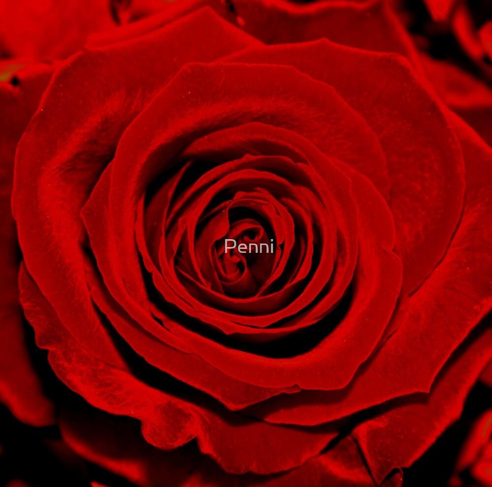 Red velvet  by Penny V-P