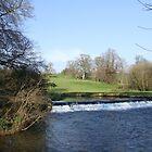 Doneraile Wildlife Park, Cork by CFoley