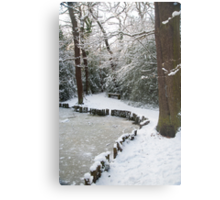 A Winter Walk in the Woodlands: Dulwich Woods, London, UK. Metal Print