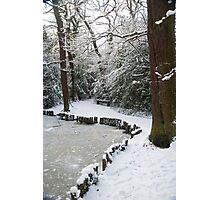 A Winter Walk in the Woodlands: Dulwich Woods, London, UK. Photographic Print