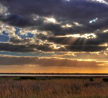 Salt Pan - Salt Creek, Limestone Coast, South Australia by Mark Richards