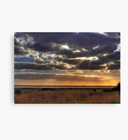 Salt Pan - Salt Creek, Limestone Coast, South Australia Canvas Print