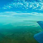 Lake Eyre, central Australia. by Neville Jones