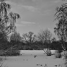 The Grey Lake by edfcole