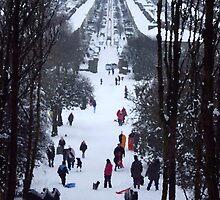 Park snow scene by judith murphy