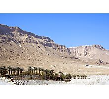 Mountains And Oasis Next To The Dead Sea Photographic Print