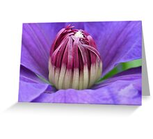 Clematis Center 2 Greeting Card