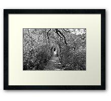 black and white wellfleet path  Framed Print