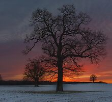 Hot and Cold by joshimages