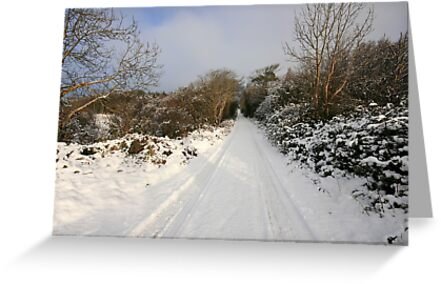 Clare road in winter by John Quinn
