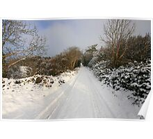 Clare road in winter Poster