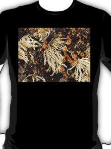 Seaweed And Rust...............................Most Products T-Shirt