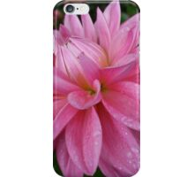 pink dahlia after a shower iPhone Case/Skin
