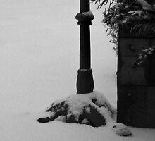 Still winter.... by Hans Bax