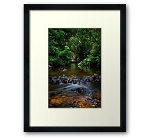 Little Creek, Phantom Valley Framed Print